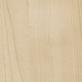 Starnberg juhar