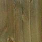 Pácolt erdei fenyő